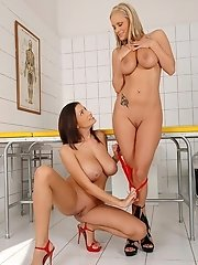 Two big belled babes boinking!